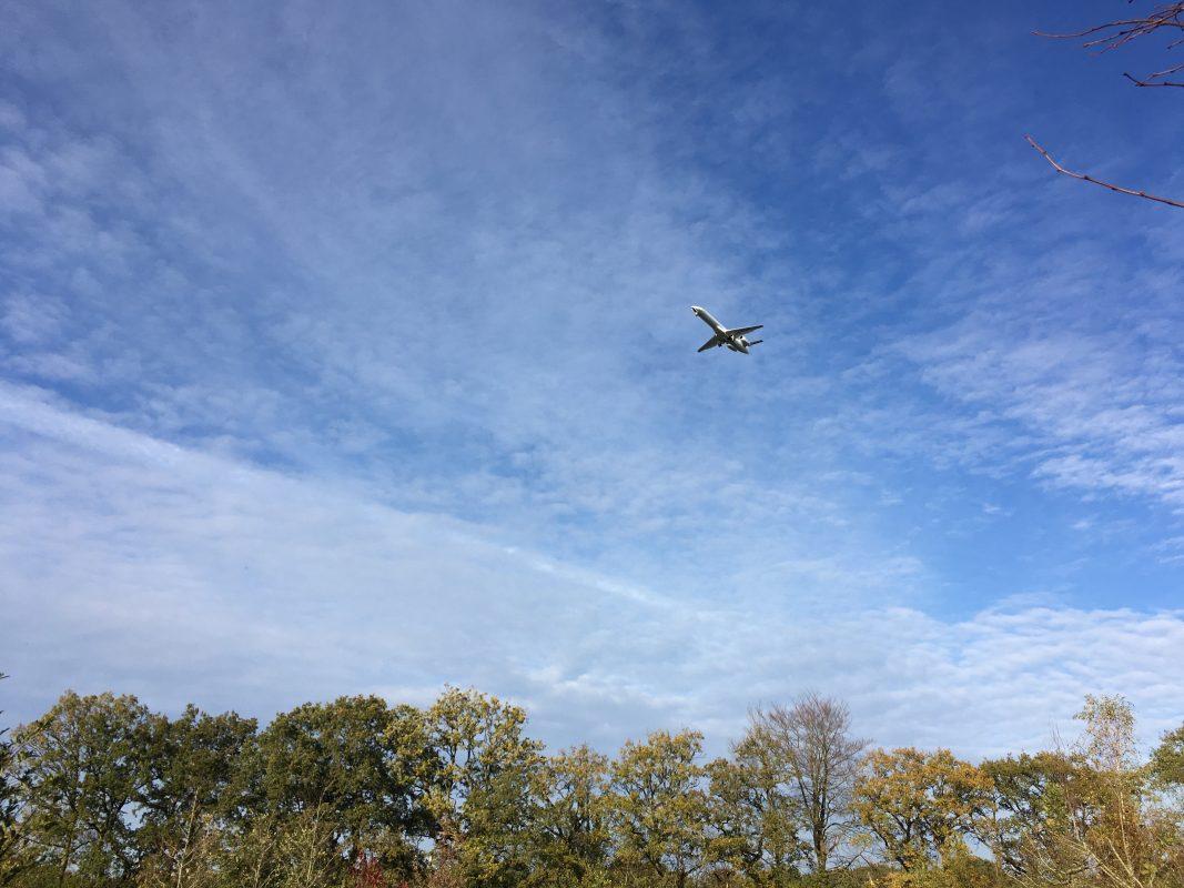 Vliegtuig boven bomen